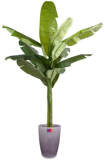 Arbre fruitier artificiel bananier plante int rieur h for Plante arbre interieur