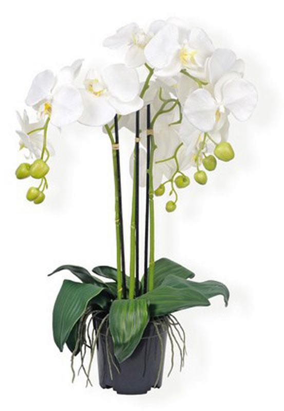 Plante artificielle orchid e en pot plante synth tique cm blanc for Plante 90 cm
