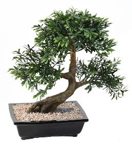 Arbre artificiel Bonsaï Black Willow coupe - plante synthétique intérieur - H.50 cm