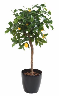 arbre artificiel fruitier citronnier t te en pot. Black Bedroom Furniture Sets. Home Design Ideas