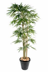 Bambou artificiel ext rieur int rieur artificielflower for Faux bambou pas cher