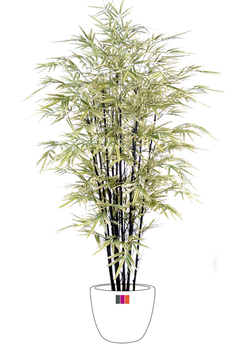 bambou artificiel cannes noires 125cm. Black Bedroom Furniture Sets. Home Design Ideas