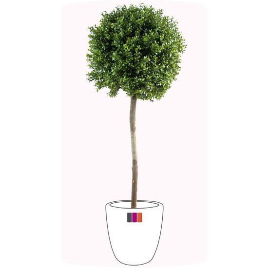 Plante artificielle buis tige boule int rieur ext rieur for Plante interieur exterieur