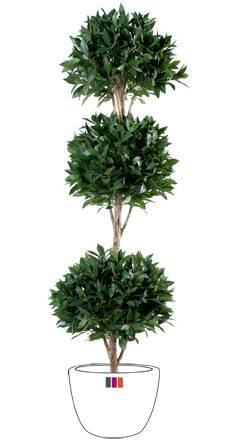 Plante artificielle laurier 3 boules d coration for Plante boule artificielle