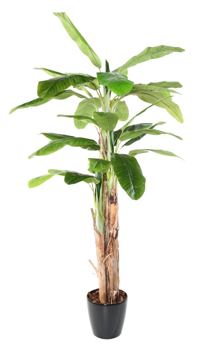 Arbre artificiel fruitier Bananier 3 troncs - intérieur - H.240 cm vert