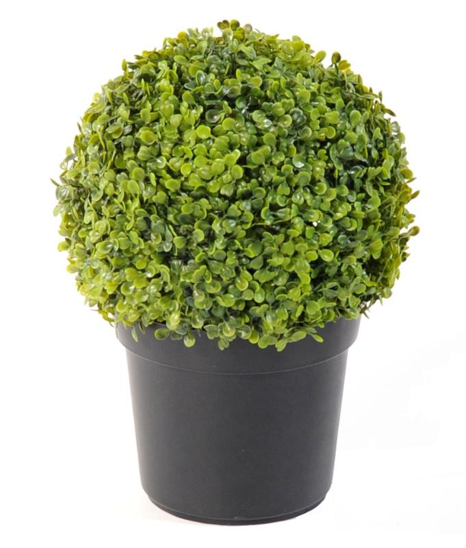 Plante artificielle buis en pot int rieur ext rieur h for Plante verte exterieur