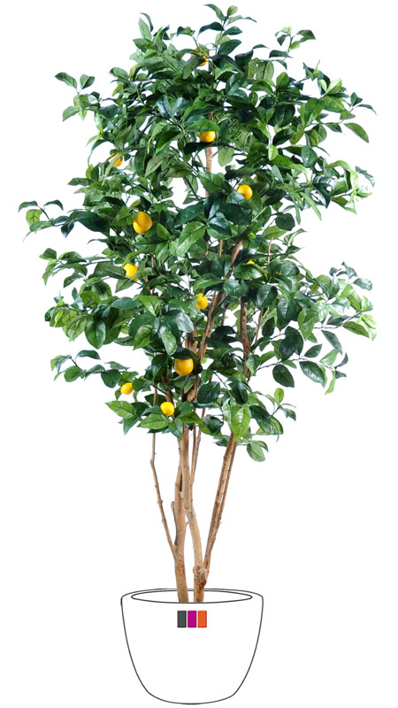 Arbre fruitier artificiel citronnier et fruits plante for Plante arbre interieur