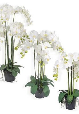 plante artificielle orchid e en pot plante synth tique cm blanc. Black Bedroom Furniture Sets. Home Design Ideas