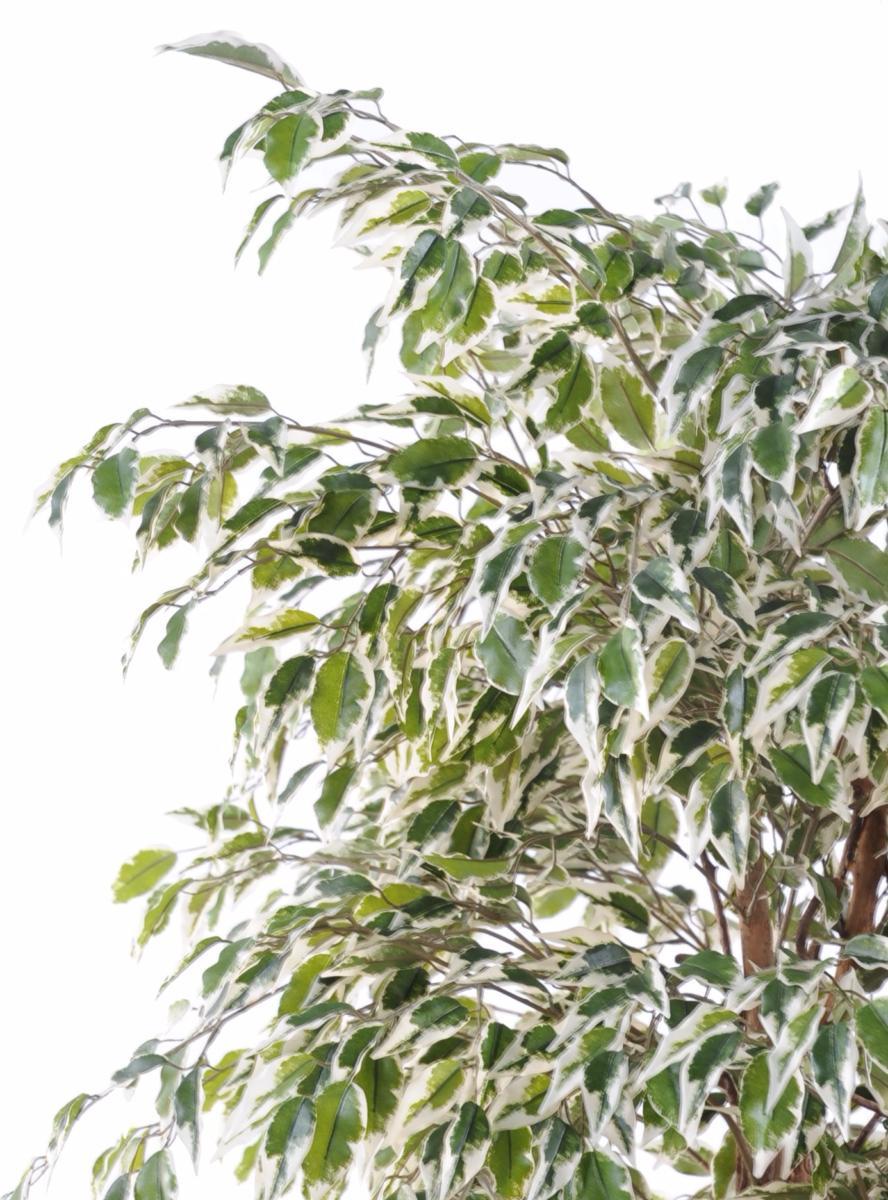 arbre artificiel ficus lianes petites feuilles plante d 39 int rieur cm vert cr me. Black Bedroom Furniture Sets. Home Design Ideas