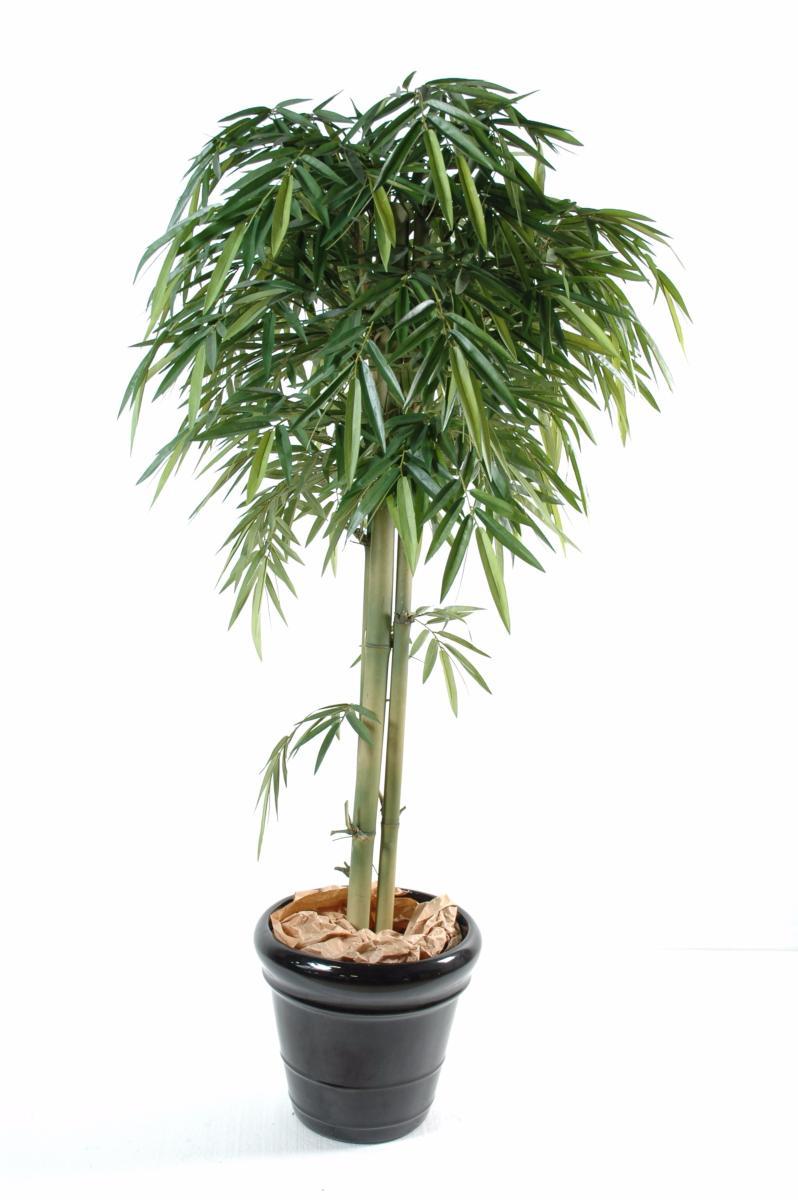 Bambou artificiel new t te 3 cannes naturelles int rieur for Branche bambou artificiel