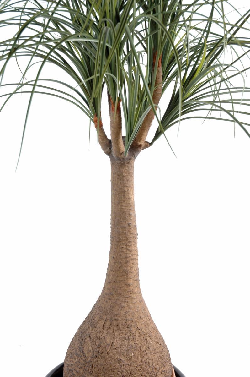 Plante artificielle beaucarnea pied d 39 l phant int rieur h 125cm - Plante verte appelee pied d elephant ...