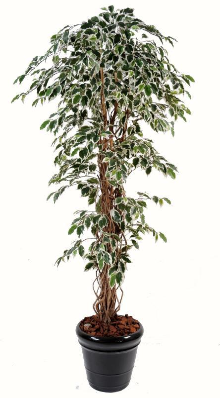 Arbre artificiel ficus lianes grandes feuilles plante d for Arbre decoratif interieur