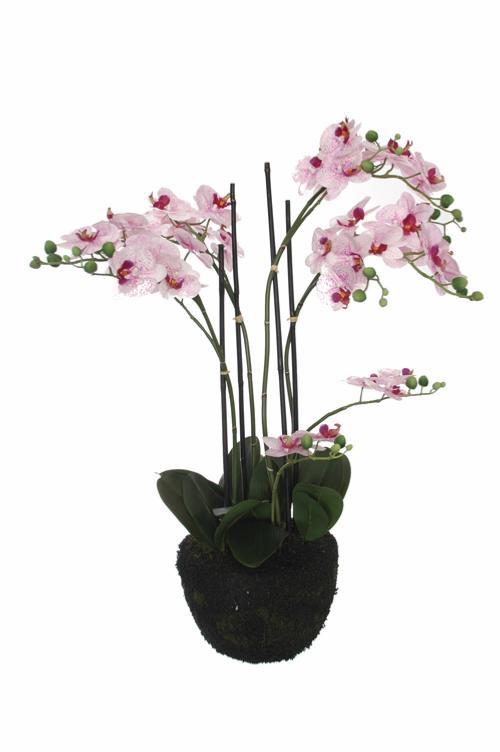 Plante artificielle orchid e en pot pour int rieur 90cm cr me fuchsia - Arrosage orchidee en pot ...