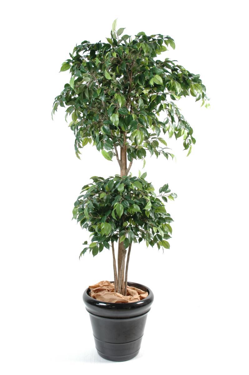 Boule Decoration.Arbre Artificiel Ficus Double Boule Décoration Intérieure H 150 Cm