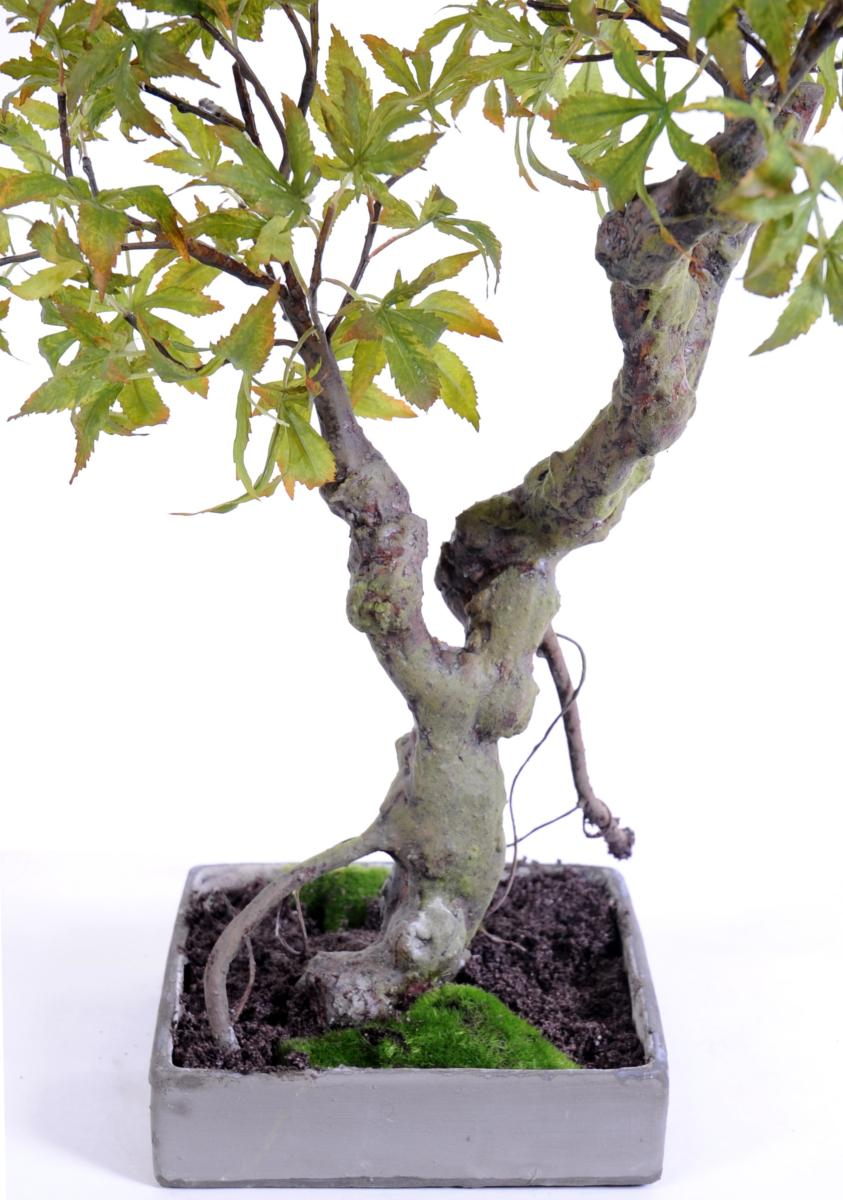 arbre artificiel miniature bonsai erable en coupe plante d 39 int rieur cm automne. Black Bedroom Furniture Sets. Home Design Ideas