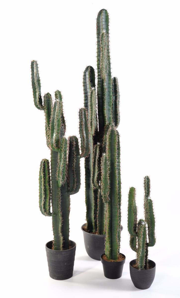Plante artificielle cactus finger plante synth tique for Cactus artificiel exterieur