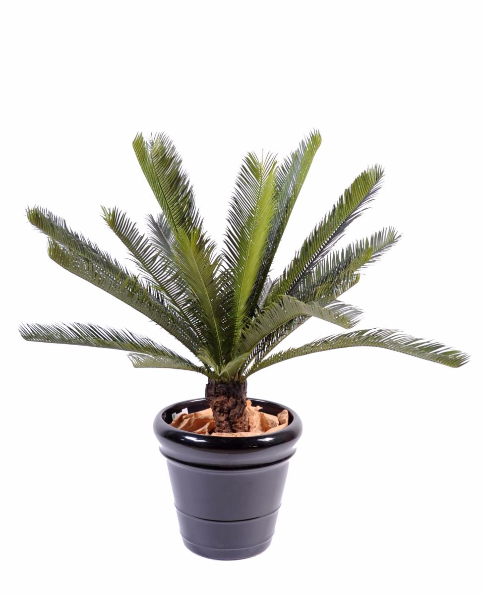 Palmier artificiel cycas tronc plante int rieur for Palmiers artificiels
