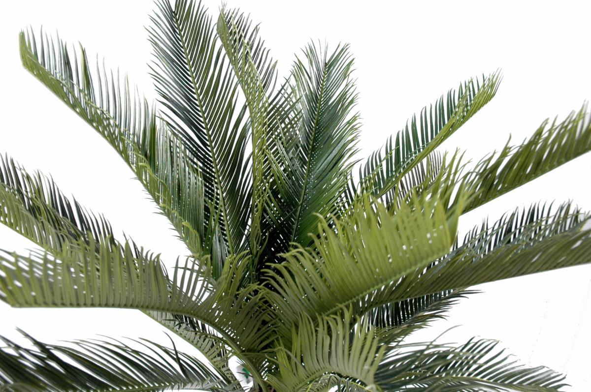 Palmier artificiel cycas tronc plante int rieur ext rieur cm vert - Plante artificielle palmier ...