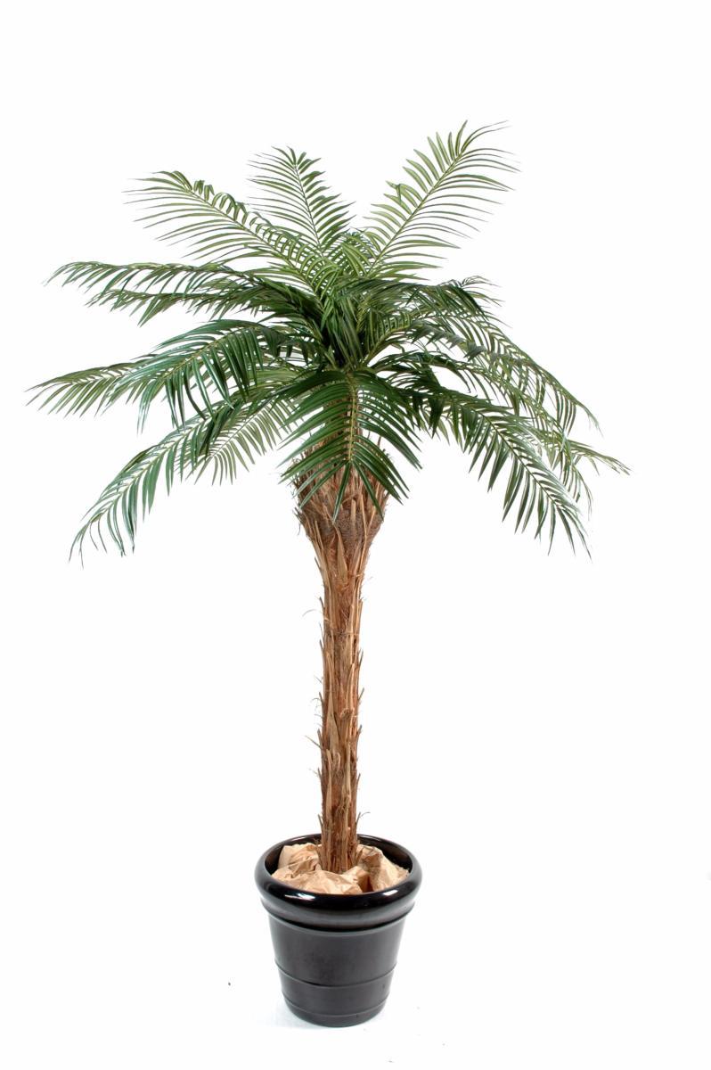 Palmier artificiel phoenix plante int rieur cm vert - Palmier d interieur ...