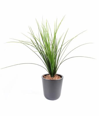 Plante artificielle ext rieur artificielflower for Plantes en plastique exterieur
