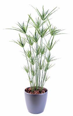 plante artificielle papyrus ornemental plastique en pot int rieur ext rieur h 110cm vert. Black Bedroom Furniture Sets. Home Design Ideas
