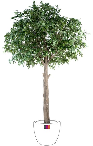 Arbre artificiel forestier ch ne t te int rieur 210 cm for Arbres artificiels interieur