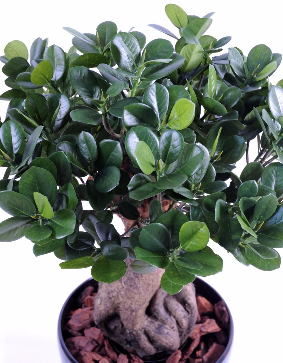 Bonsa artificiel arbre miniature ficus panda ginseng plante artificielle d 39 int rieur cm - Plantes fleuries d interieur ...