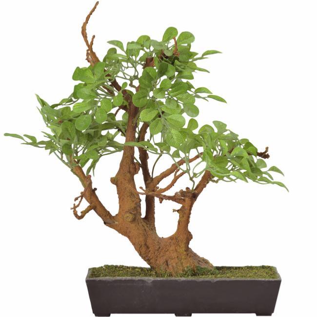 bonsai artificiel arbre miniature laura plante d 39 int rieur cm. Black Bedroom Furniture Sets. Home Design Ideas