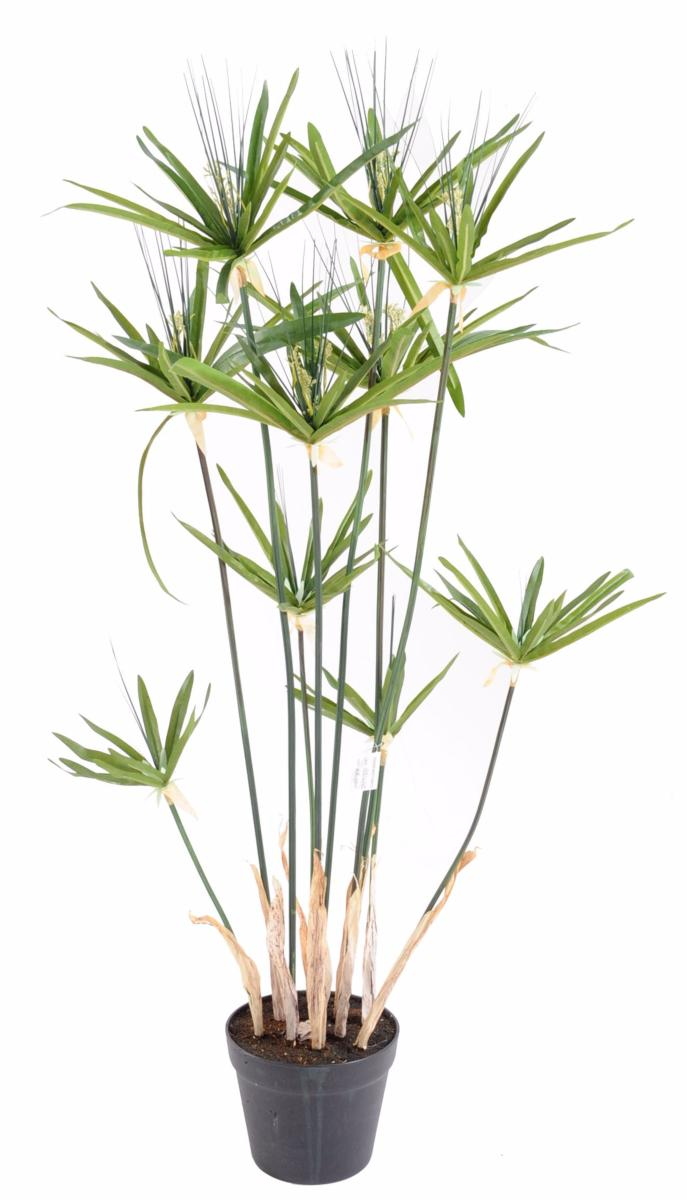 Plante artificielle papyrus alternifolius en pot for Pot plantes interieur