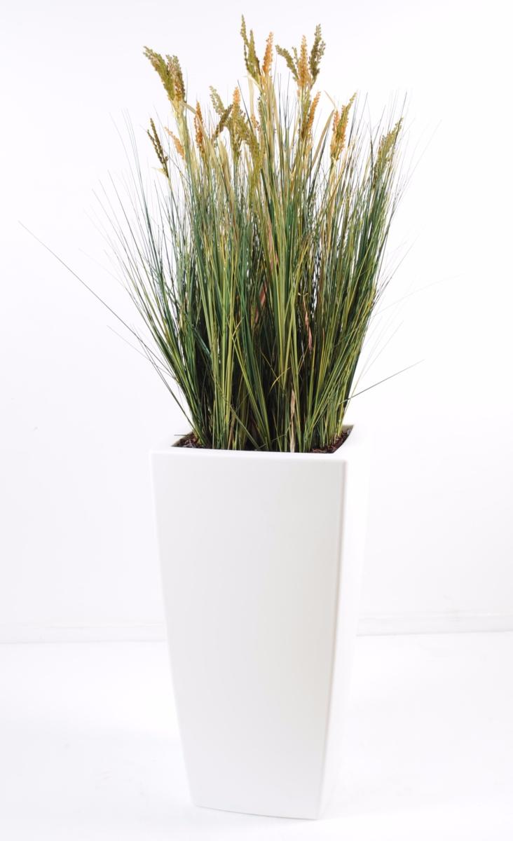 Plante artificielle papyrus scirpus validus fleuri en pot int rieur h 125cm - Papyrus plante d interieur ...