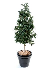 Plante artificielle Laurier pyramide - topiaire artificiel - H.150 cm vert