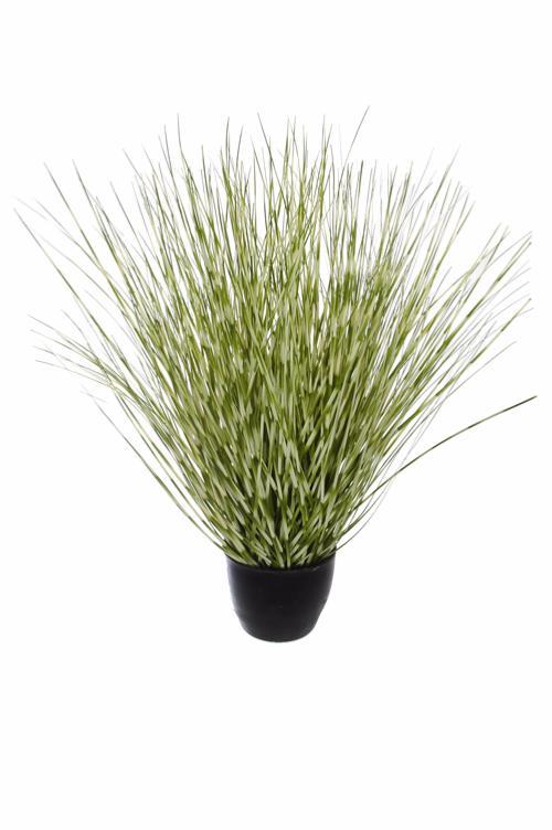 plante artificielle herbe zebra en pot int rieur h 51cm vert cr me. Black Bedroom Furniture Sets. Home Design Ideas