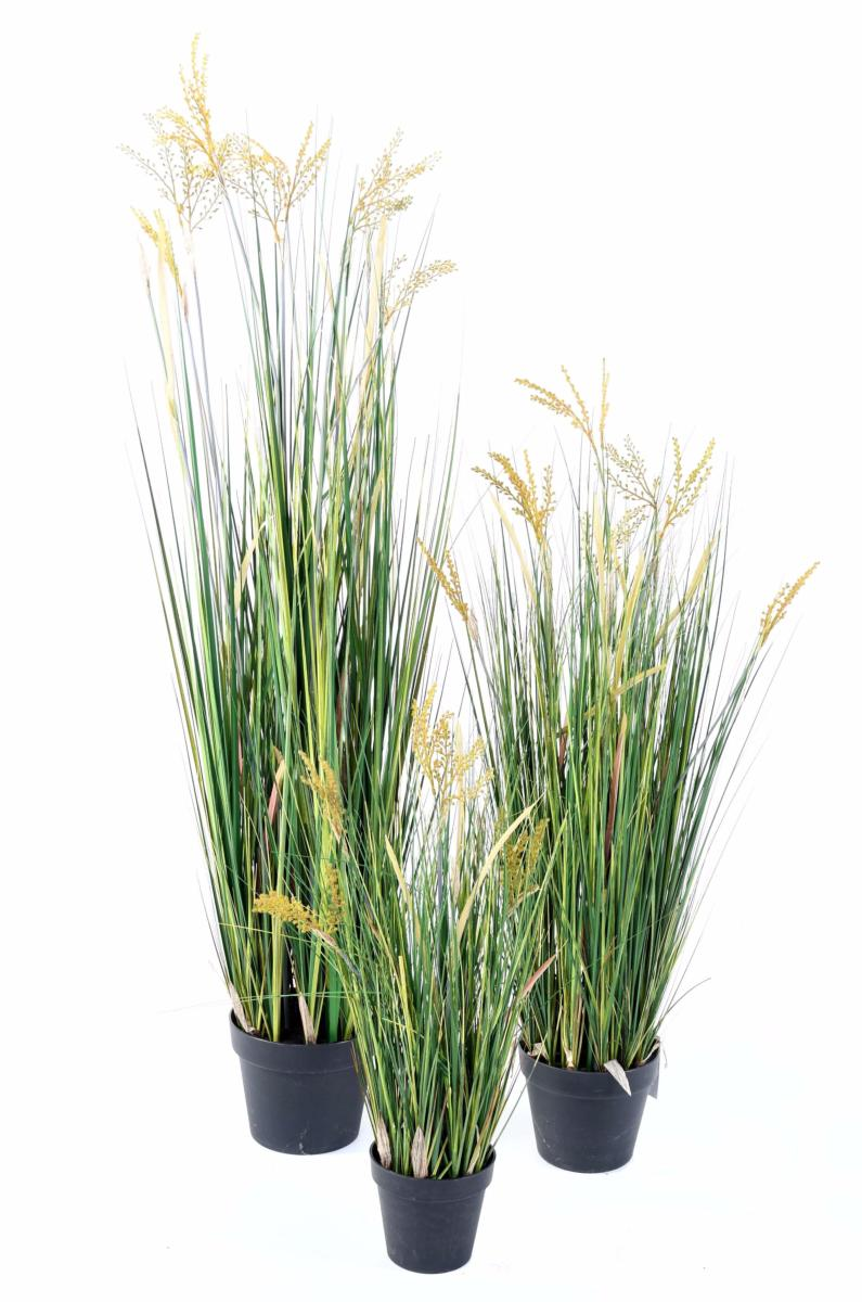 plante artificielle papyrus scirpus validus fleuri en pot int rieur h 60 cm. Black Bedroom Furniture Sets. Home Design Ideas