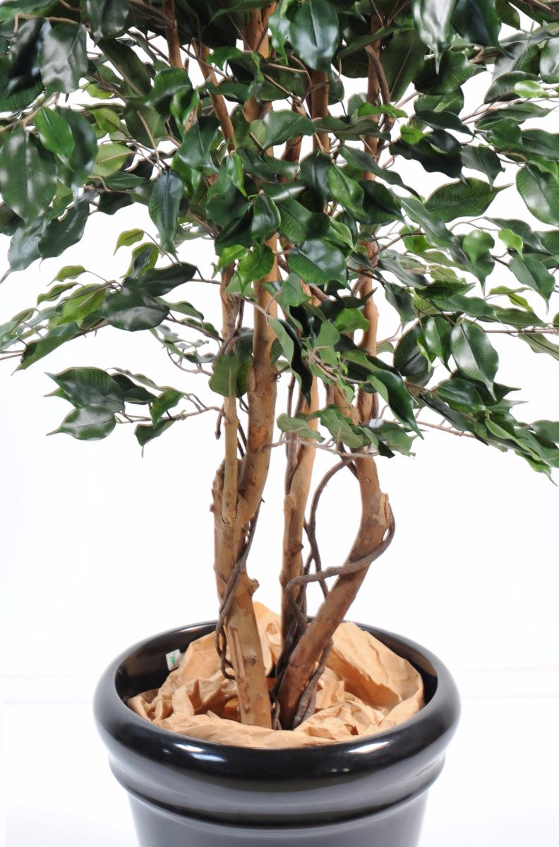 Arbre artificiel ficus exotica plante d 39 int rieur h for Arbre artificiel pour interieur