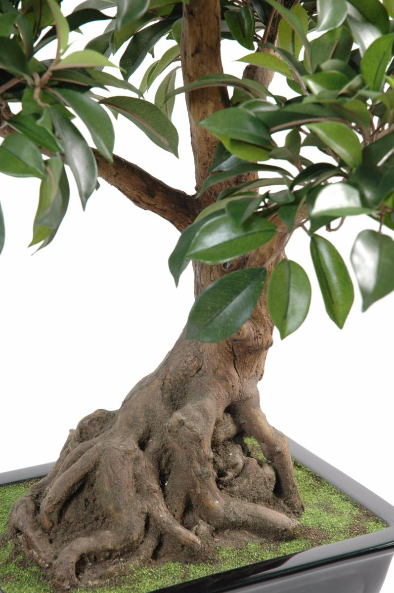 https://www.artificielflower.com/Files/34015/Img/09/Bonsai-artificiel-arbre-miniature-Ficus-en-coupe-plante-d-interieur-H-58-cm-.jpg