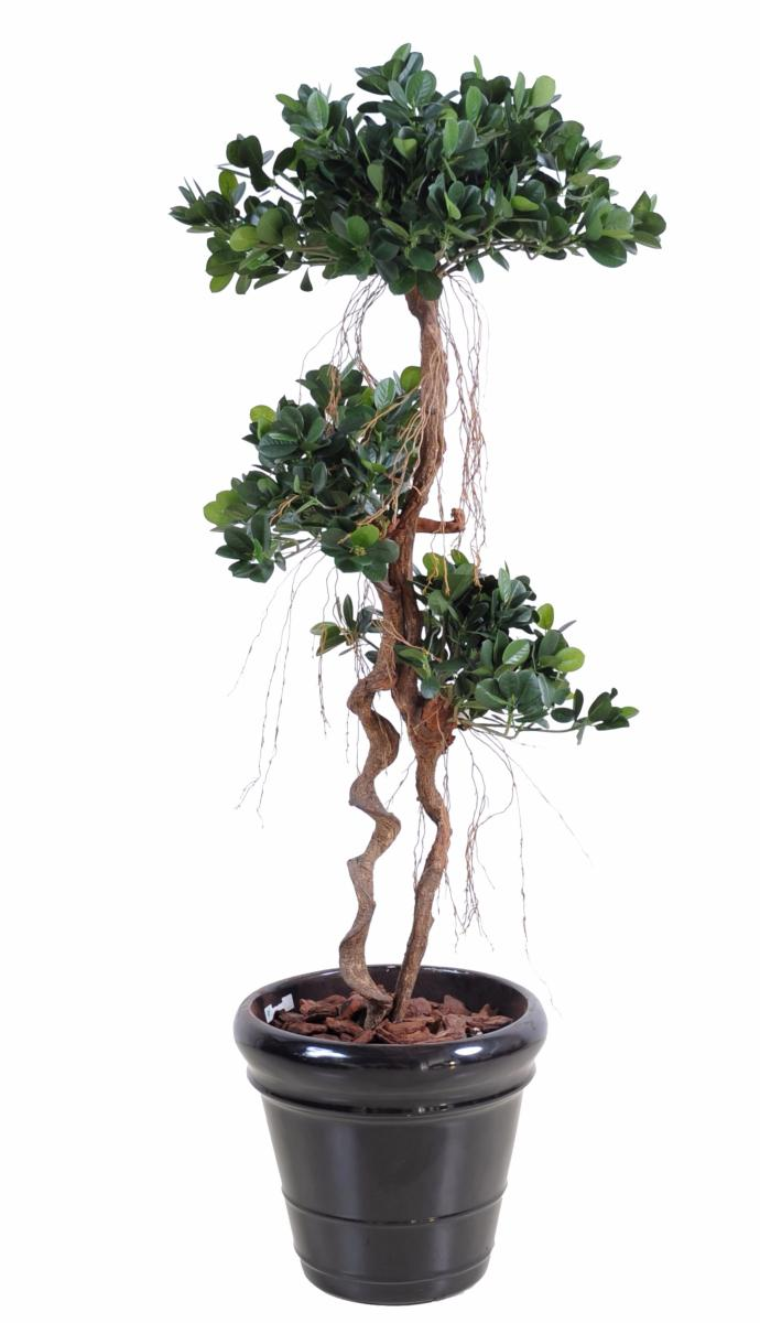 arbre artificiel ficus panda microcarpa plante int rieur 140 cm. Black Bedroom Furniture Sets. Home Design Ideas