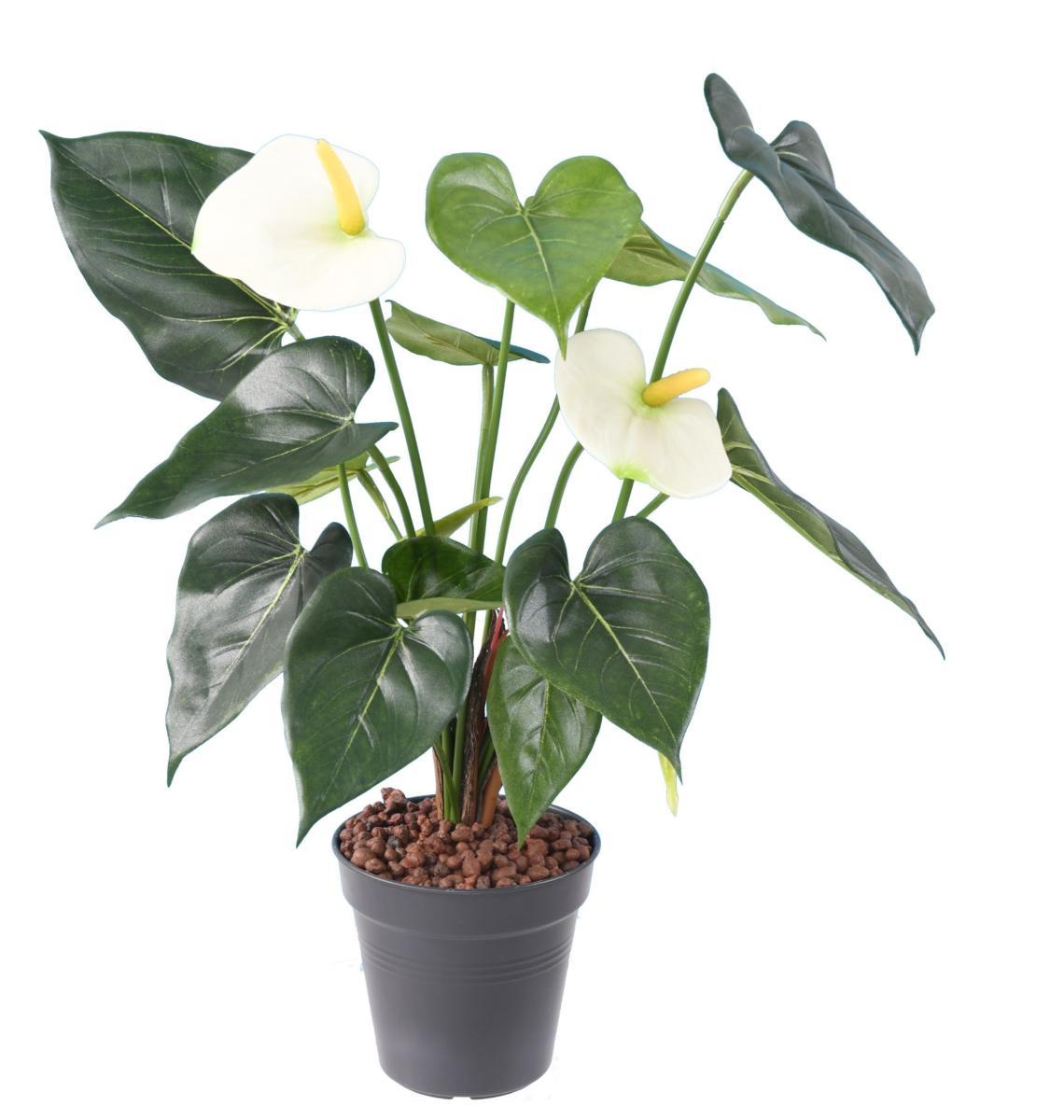 fleur artificielle anthurium en piquet plante d 39 int rieur cm blanc. Black Bedroom Furniture Sets. Home Design Ideas