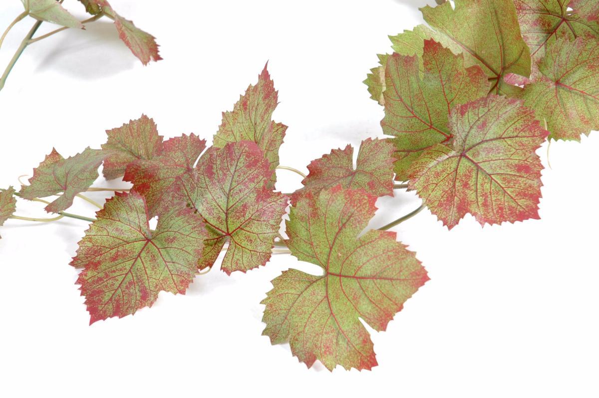 guirlande artificielle de vigne automne 34 feuilles interieur h 118 cm vert rouge. Black Bedroom Furniture Sets. Home Design Ideas