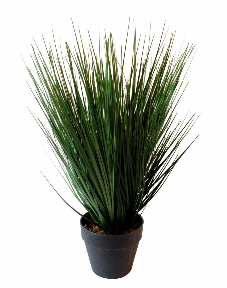 plante artificielle herbe onion grass en pot int rieur h 37 cm. Black Bedroom Furniture Sets. Home Design Ideas