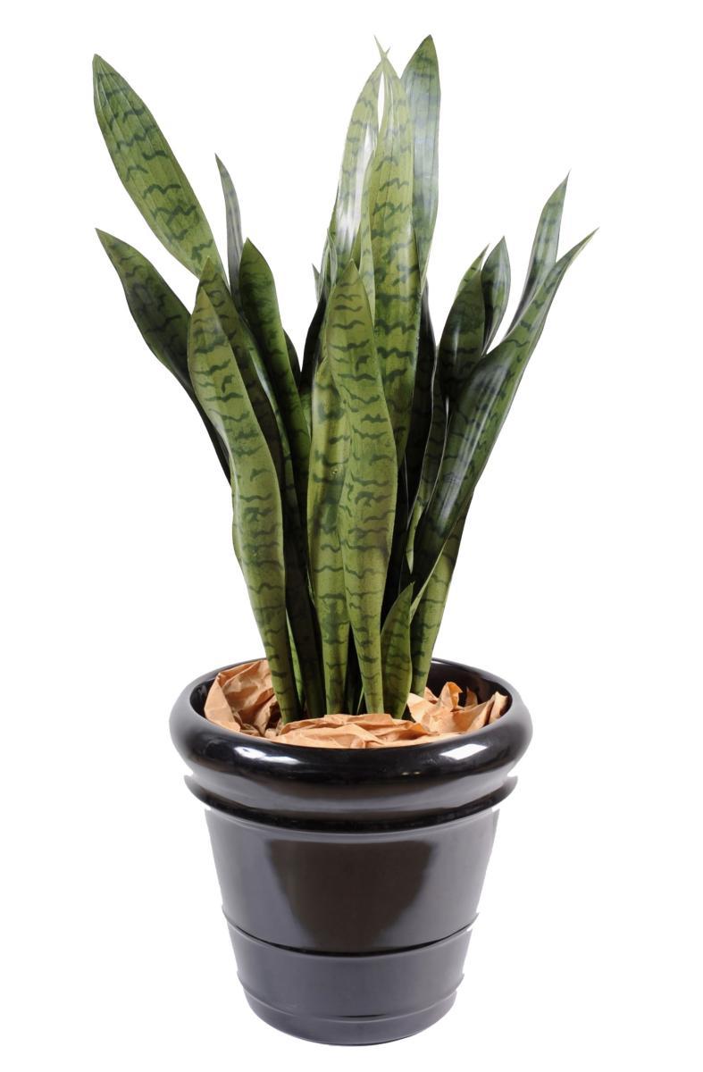 plante artificielle sansevieria large d coration d. Black Bedroom Furniture Sets. Home Design Ideas