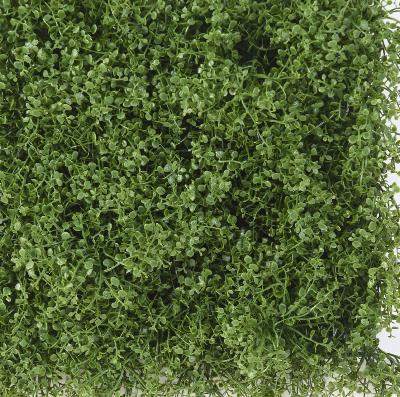 plaque v g tale artificielle helixine d coration murale h 31 cm vert. Black Bedroom Furniture Sets. Home Design Ideas