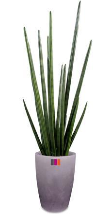 cactus artificiels artificielflower. Black Bedroom Furniture Sets. Home Design Ideas