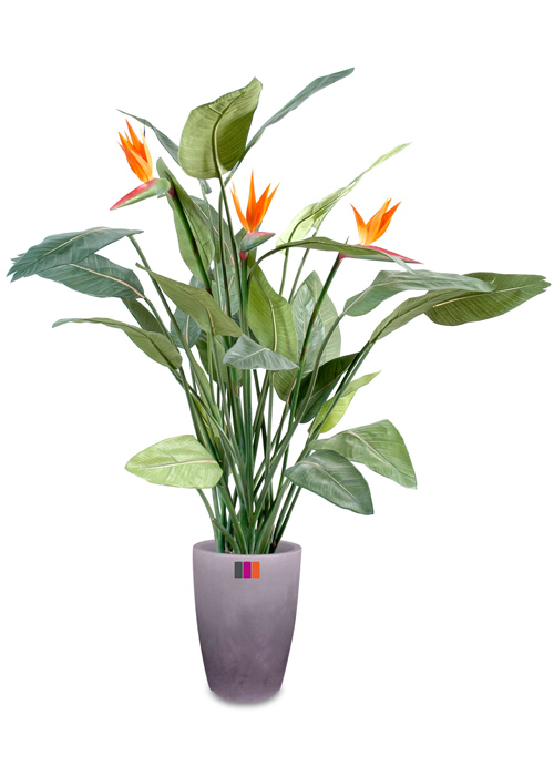 plante artificielle fleurie strelitzia 3 fleurs d coration int rieure cm. Black Bedroom Furniture Sets. Home Design Ideas