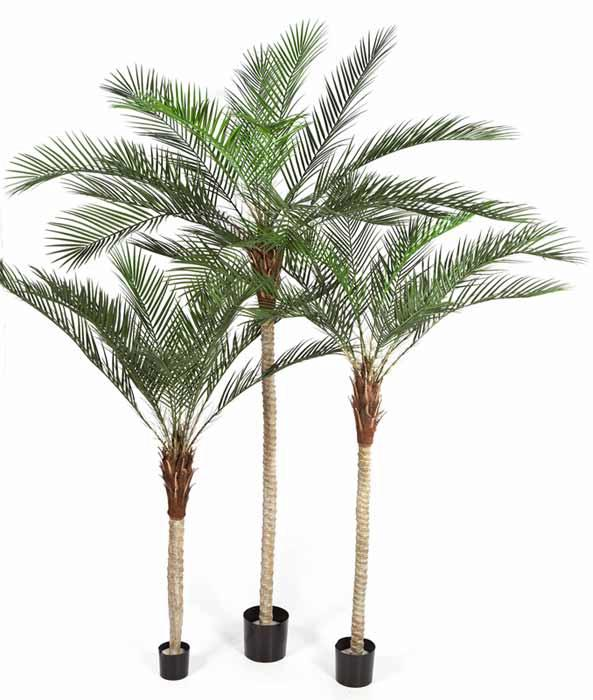 Palmier artificiel phoenix palm plante int rieur for Palmier artificiel interieur