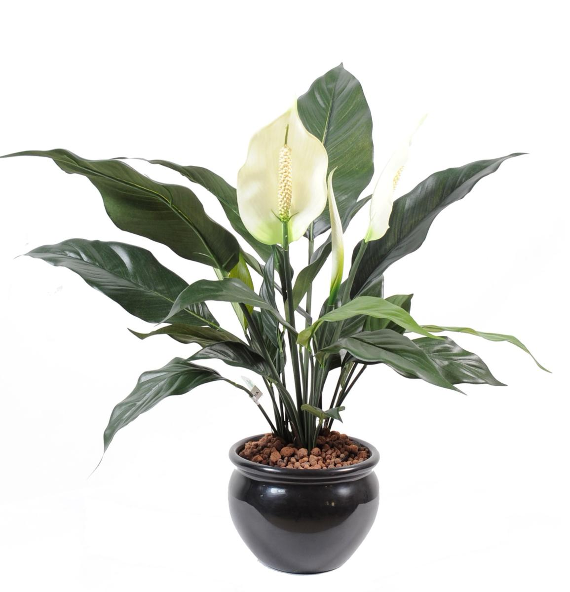 Plante artificielle fleurie spathiphylium en pot for Pot plantes interieur