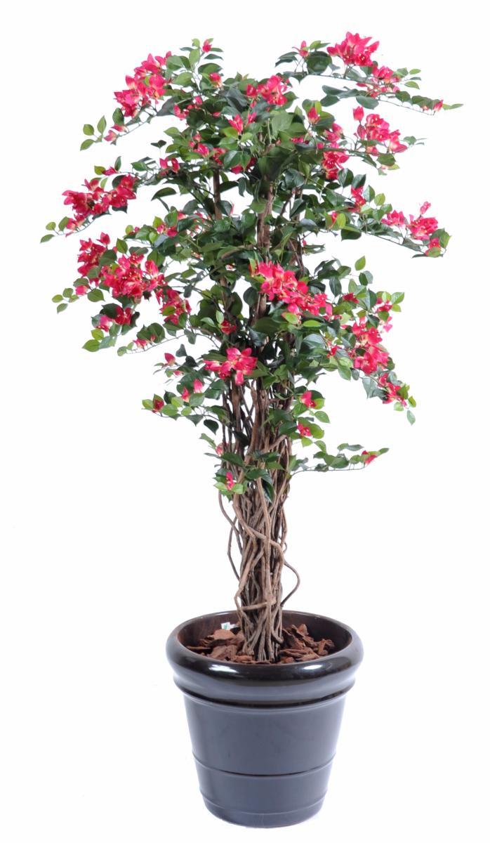 arbre artificiel fleuri bougainvillier plante d 39 int rieur cm fuchsia. Black Bedroom Furniture Sets. Home Design Ideas