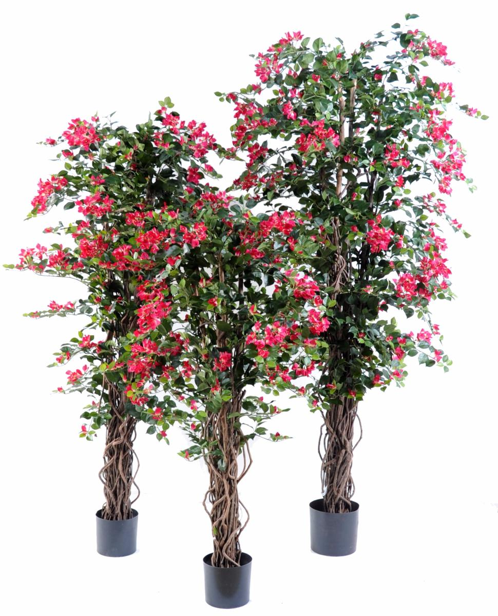 arbre fleuri artificiel bougainvill e fuchsia 150cm. Black Bedroom Furniture Sets. Home Design Ideas
