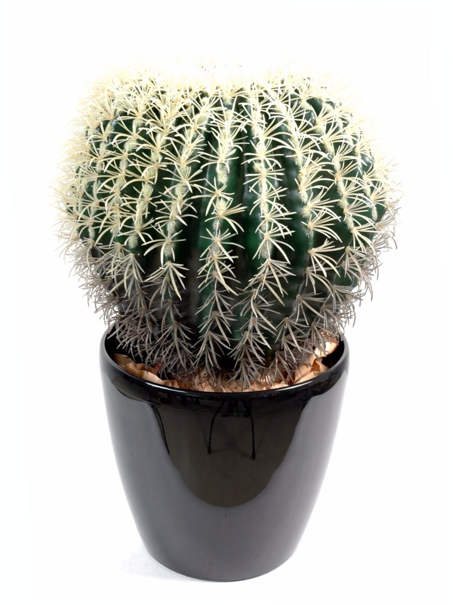 Cactus artificiel coussin de belle m re plante d for Cactus artificiel pour exterieur