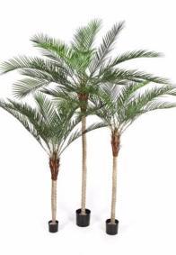 Artificiel flower arbres plantes et v g tation artificielle for Fausse plante palmier