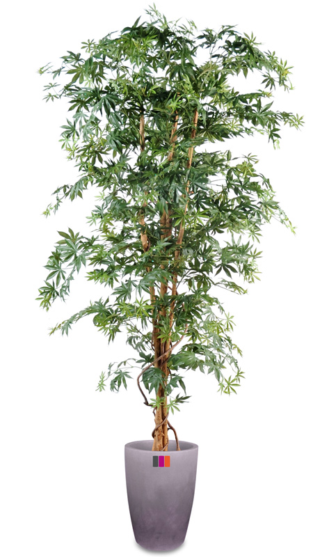 Arbre forestier artificiel aralia new plante d 39 int rieur for Plante arbre interieur